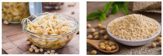 Chị em có thể học cách làm bột mầm đậu nành tại nhà