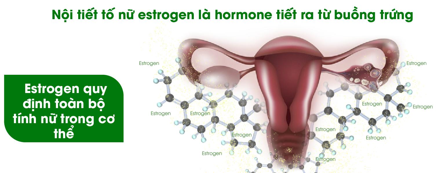 Hormone nữ chưa ổn định làm cho vòng 1 bị nhỏ, lép