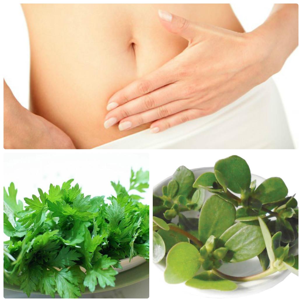 Ngải cứu và rau sam cũng là nguyên liệu chữa bệnh phụ khoa tốt